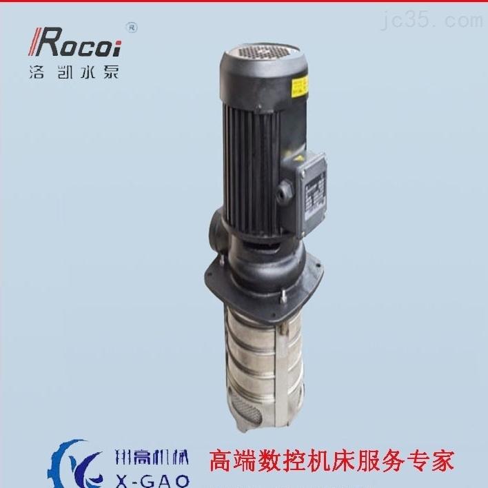 武汉供应Rocoi洛凯立式水泵